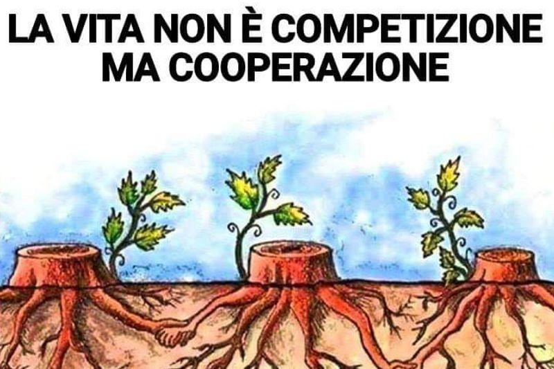 Cooperare è la soluzione ed anche la nostra filosofia. Scopri la nostra Mission!